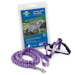 PetSafe Come With Me Kitty Harness & Bungee Cat Leash